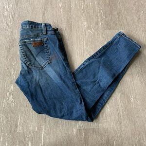 Joe's Jeans Skinny Ankle Fit size 25